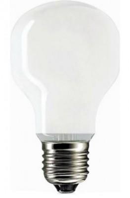 Лампа накаливания PH SOFTONE 60W E27 230V T55 WH 1CT/24X5F