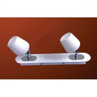 Светильник настенно-потолочный DeLux Decor SPOT SNP-0041-02-LN