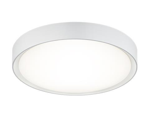 Потолочный светильник Trio 659011801