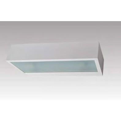 Настенно-потолочный светильник Zuma Line 20024-WH Houx Wl 25 White